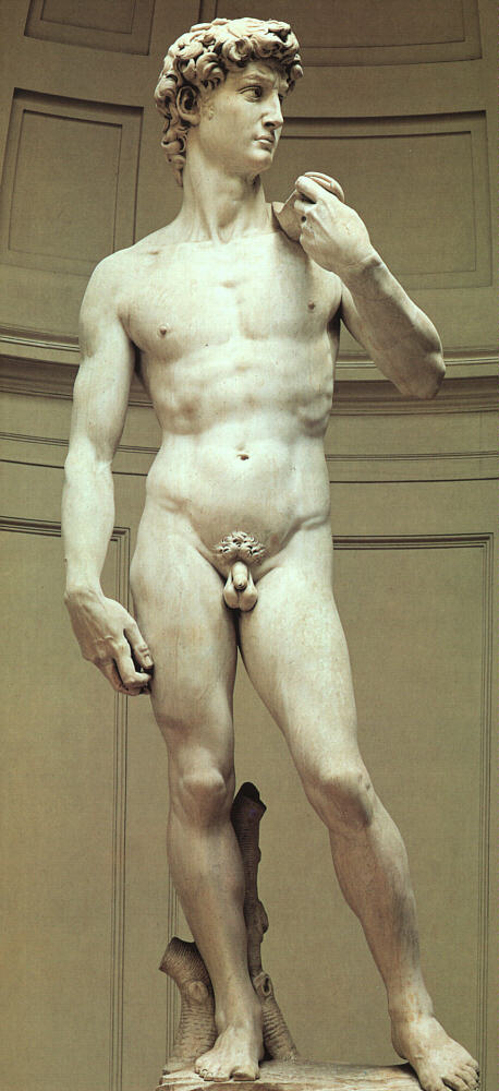 """Michelangelo-David JB01"" by Jörg Bittner Unna - Own work. Licensed under CC BY 3.0 via Wikimedia Commons"