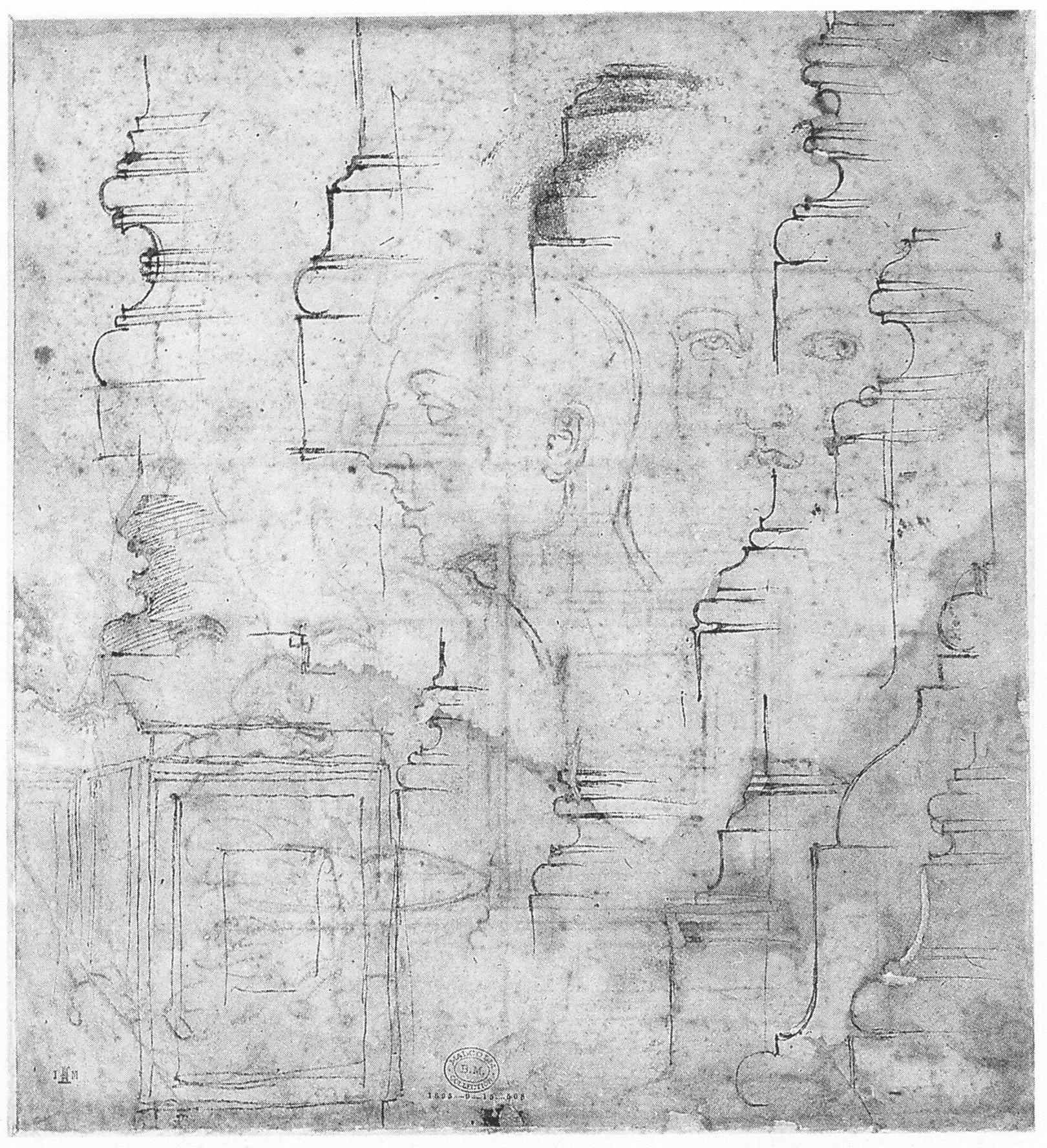michelangelo anatomy as architecture in williamsburg va