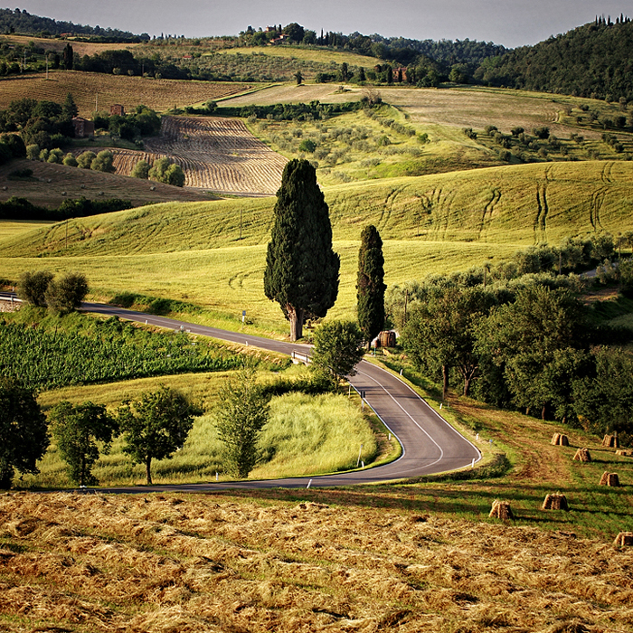 Landscape near Sansepolcro by Flickr user  Edgar Barany C