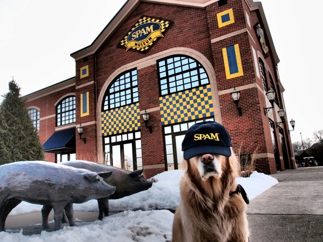 Who knew there was a Spam Museum?