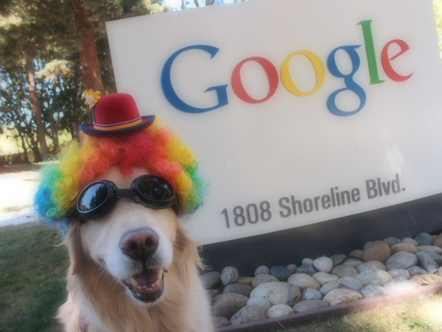 Google Headquarters. Note the goggles.