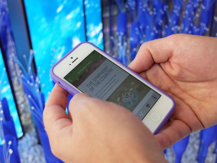Azerbaijan's app in use