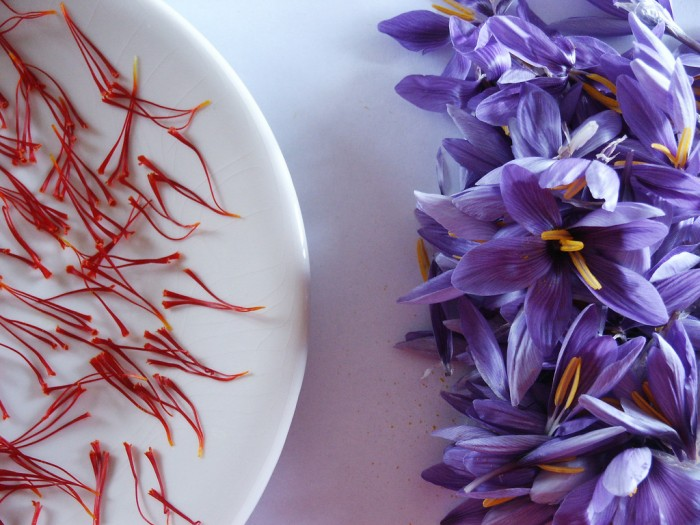 Saffron | Photo Agriturismo San Giovanello on Flickr (creative commons)