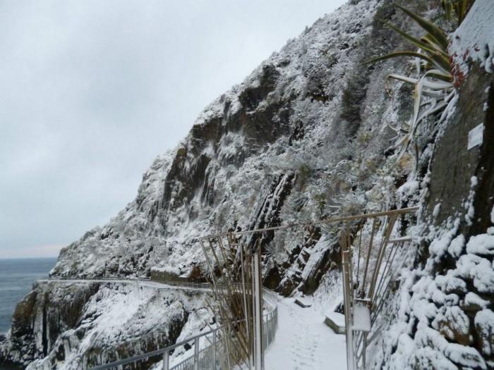 Cinque Terre - la via dell'Amore in a very rare snowfall | Photo Andrea Scibilia