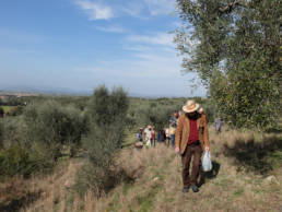 Foraging in Tuscany