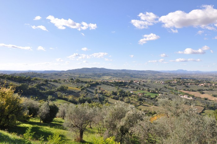A typical view of the Umbrian countryside