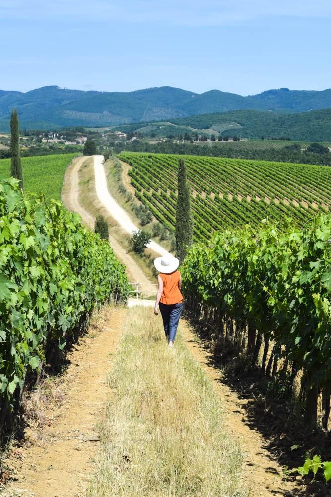 Me in the vines at Dievole. Photo Michelle Davis.
