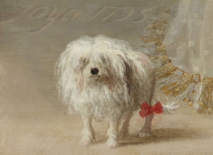 Detail of the dog in Goya's painting