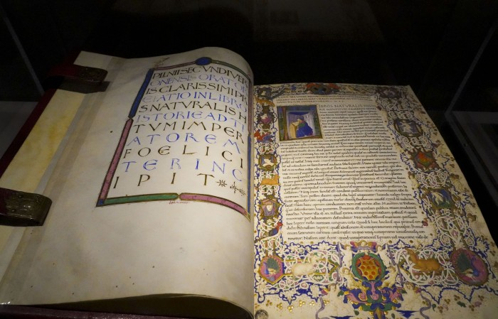 An illustrated MS from the Biblioteca Medicea Laurenziana