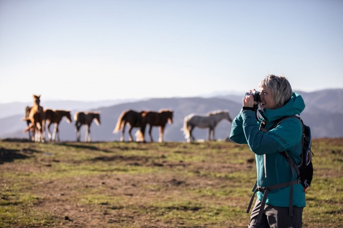 Me photographing wild horses on a plain above Prato in Tuscany | Ph. Alice Russolo