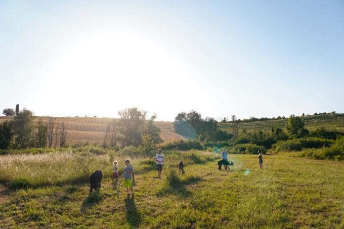 kids activity in Florence alpaca walk
